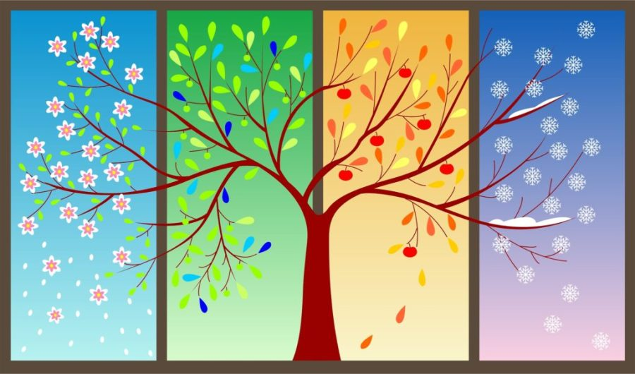 The Four Seasons Of Life You Must Learn From
